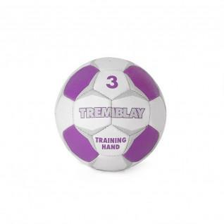 Tremblaytraining handbal